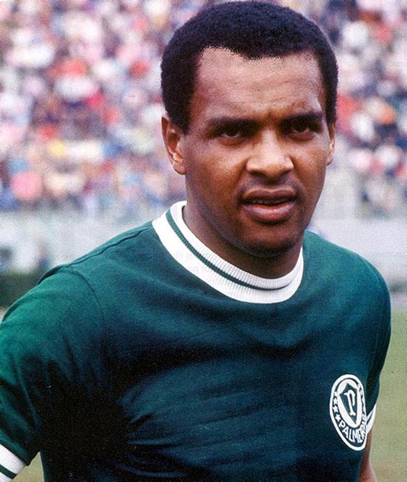 Luís Pereira, ex-jogador do Palmeiras